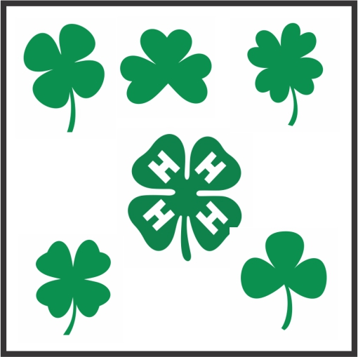 Clover Leave