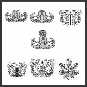 Army Badges Vector