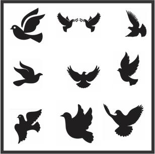 Dove Bird Svg