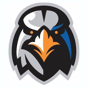 Aberdeen IronBirds Logo Vector