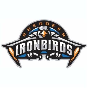 Aberdeen IronBirds Vector Logo