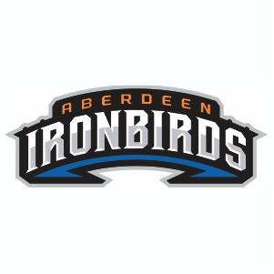 Aberdeen IronBirds Logo Svg