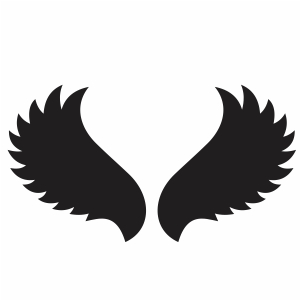 Black Wings Vector