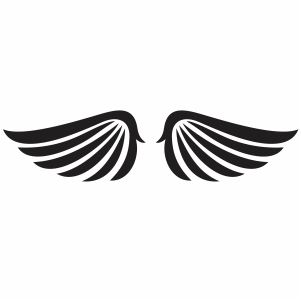 Bird Angel wings Svg