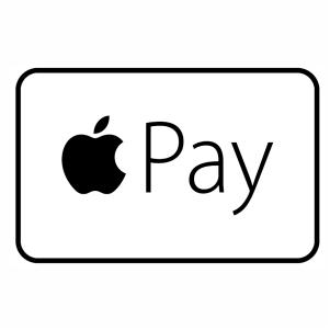 Apple Pay icon logo vector