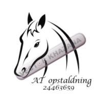 Free Horse Head Logo Vector