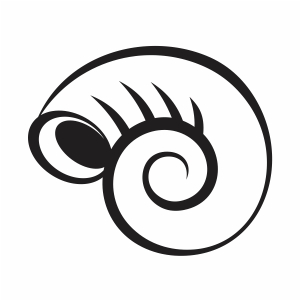 shell fossil svg file