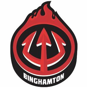 Binghamton Devils Logo Vector