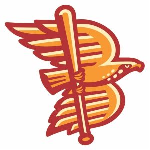 Boise Hawks Logo Vector Download