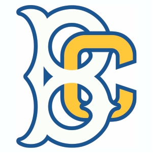 Brooklyn Cyclones Logo Vector