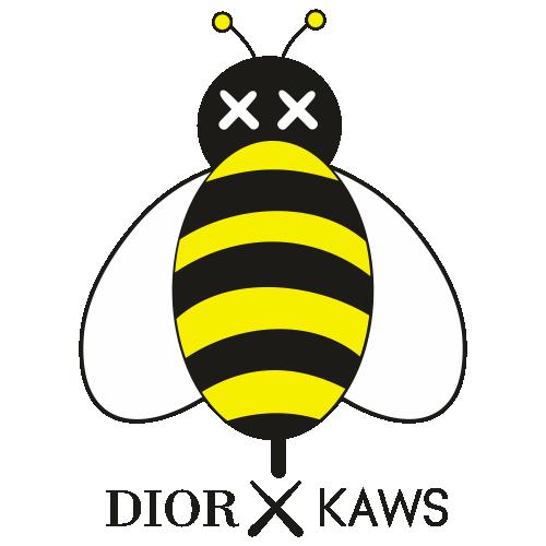 Dior Kaws Logo Svg
