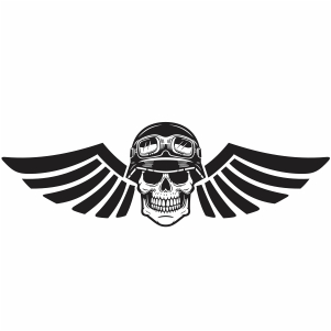 Wings skull Vector