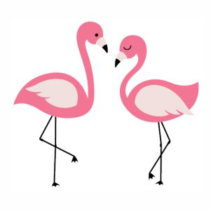 two beautiful Flamingo bird svg cut