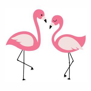 Two Beautiful Flamingo Bird  vector file