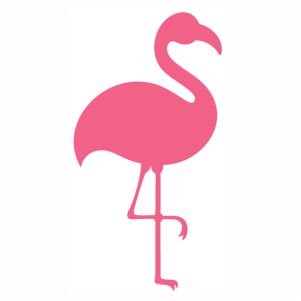 Flamingo Monogram Pretty vector