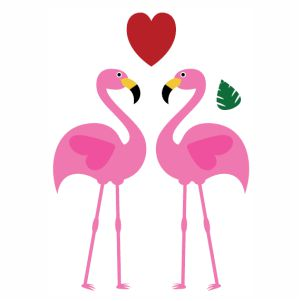 Flamingos Bird Loving vector