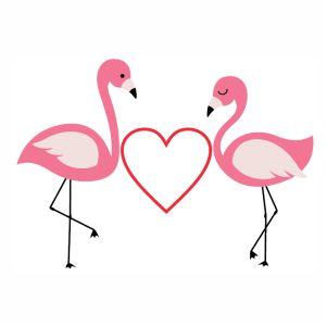 Flamingo Love vector