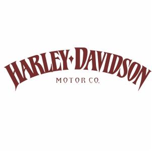 harley davidson iron 883 logo vector