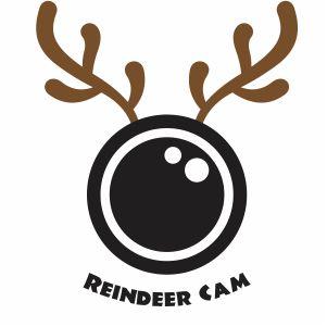 Reindeer Cam Vector