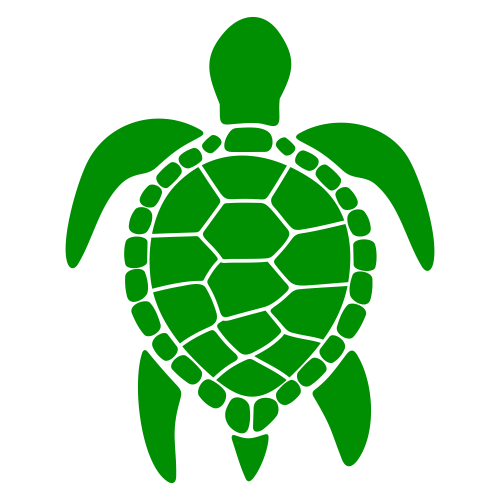 Sea Turtle Svg