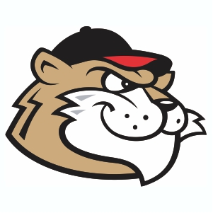 Tri-City Valleycats Logo Vector Download