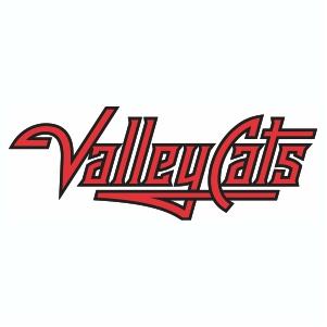 Valleycats Wordmark Logo Vector