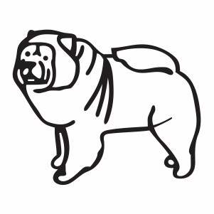 Chow Chow Dog svg