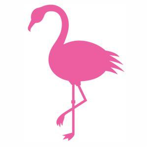 Flamingo bird pink svg