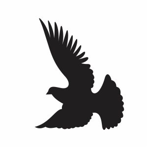 Flying Peace Dove svg