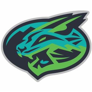 Lynchburg Hillcats Logo Svg
