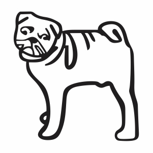 Cute Pug Svg